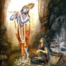 What is Sanatana Dharma?
